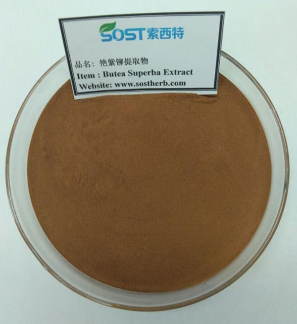 Butea superba extract powder for male supplements