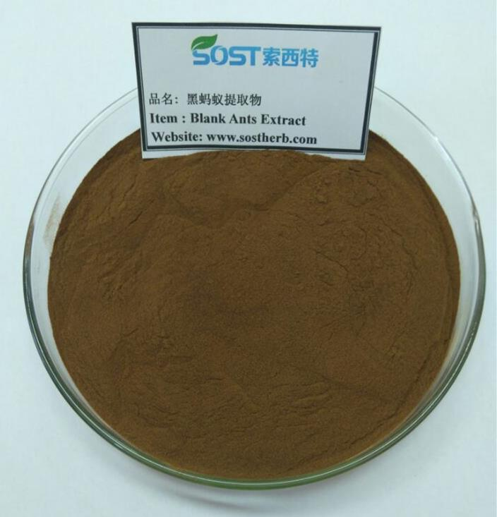 Changbai Mountain Polyrachis Nut Powder