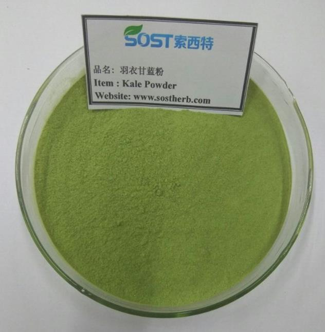 Kale powder with high nutritional values and rich in vitamins, minerals and fiber