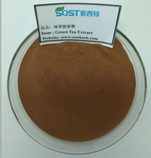 Green Tea Extract Powder, 50%- 98% Tea Polyphenol