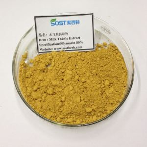 Milk Thistle Seed Extract Powder Silymarin 80%