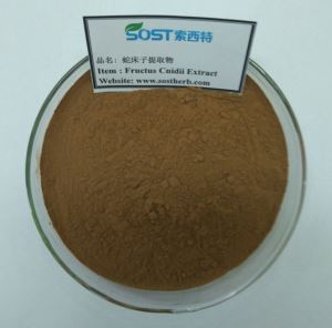 Fructus cnidii extract