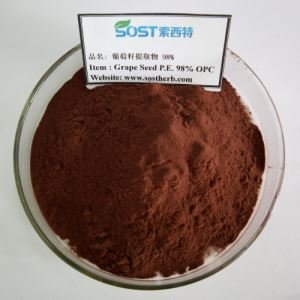 Grape Seed Extract Powder, Antioxidant Anti-ageing OPC 95%