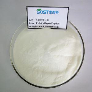 Collagen Peptide, Collagen Hydrolyzed Factory, Collagen Supplement Factory, Collagen Manufacturers China