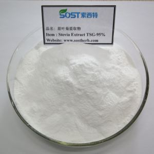 White Stevia Extract Powder, Sweetening Agent 95% Steviosides