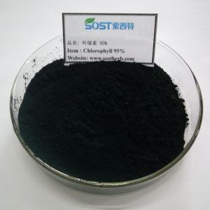 Organic Chlorella Extract Powder