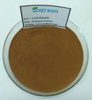 Damiana Leaf Herbal Extract Powder for sex boost