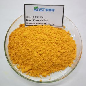 Turmeric Extract Curcumin Powder 95% Supplement
