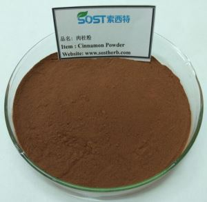 100% Natural Cinnamon Extract Powder