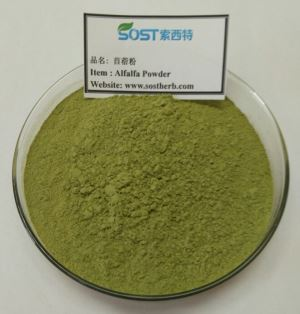 Now Alfalfa Grass Juice Powder