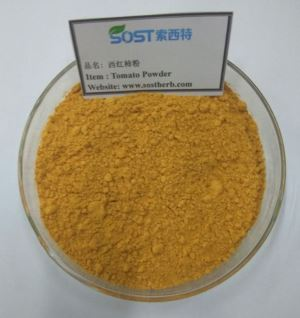 Freeze Dried Dehydrated Tomato Powder