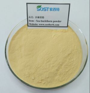 Sea buckthorn fruit juice powder