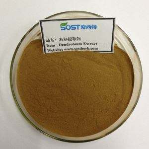 Dendrobium Extract Powder ,China dendrobium extract factory