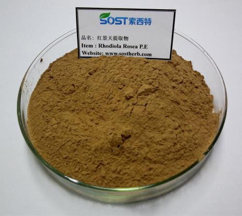 Rhodiola Rosea L Extract Powder