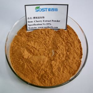 Cherry Powder, Acerola Cherry extract, Acerola Cherry Powder vitamin c Factory