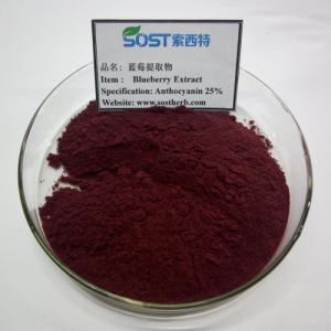 Wild Blueberry Fruit Extract Powder, 25% Anthocyanin