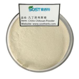 Chitin Chitosan Powder