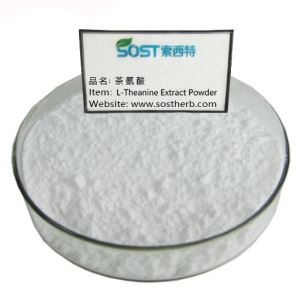 L-Theanine Extract Powder