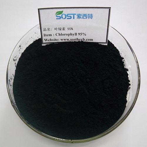 Sodium Copper Chlorophyll Powder